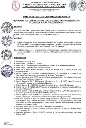 DIRECTIVA Nº 007 - 2020-GRA-DREA/DUGEL-AGP-HTA